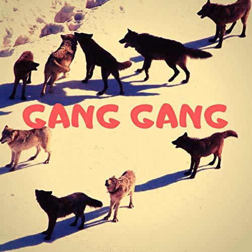 Pascha – Gang Gang