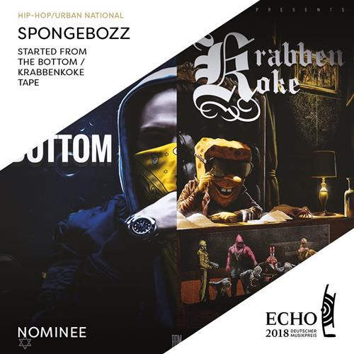 Nomination For The Echo Award