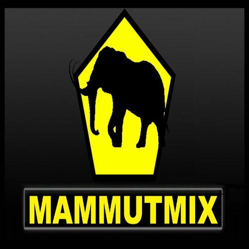 JBB 2014 – MAMMUT MIX